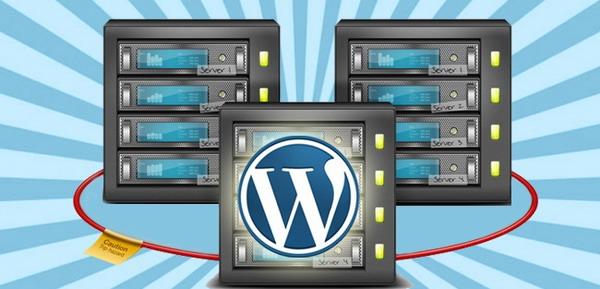 7 Tips Logis Memilih Hosting Untuk WordPress